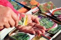 Пам'ятка споживачам при придбанні насіння