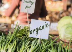 У серпні поточного року набуває чинності закон про вимоги до виробництва та маркування органічної продукції