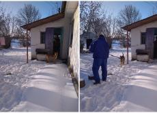 Спеціалісти Хмільницької районної державної лікарні ветеринарної медицини врятували жінку, яка була заблокована у будинку через агресивного собаку