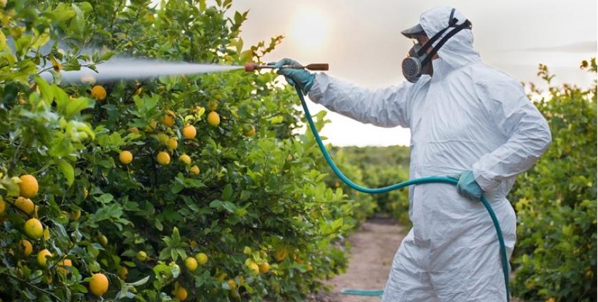 Як в умовах карантину отримати Допуск (Посвідчення) на право здійснення робіт, пов'язаних з пестицидами та агрохімікатами!